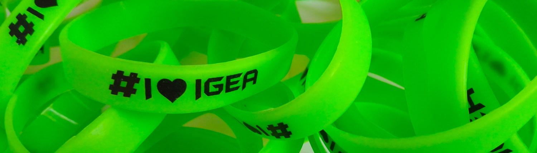 Palestra Igea